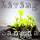 Living Sangha – Notes From Practice 2/17/13