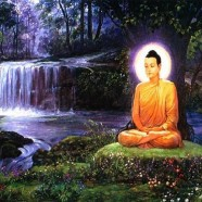 Buddha's Zen – Text Reading 2/12/12